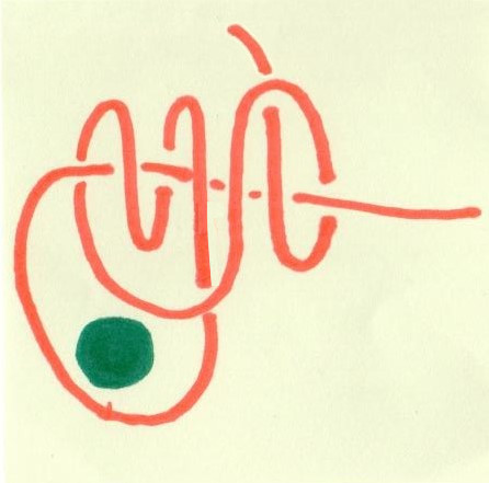 taut-line hitch drawn in marker