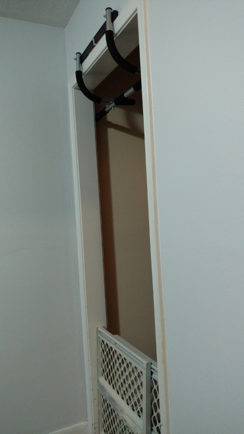 a pull up bar in a doorframe, but blocked by a baby gate
